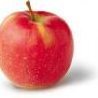 Apple Johnagold