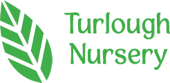 Turlough Nursery